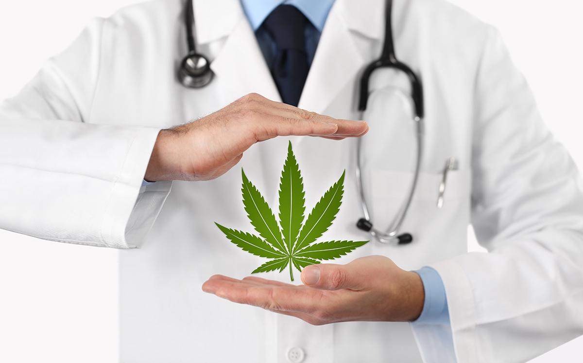 Medical Marijuana Doctors and Cards at All Natural MD Sarasota